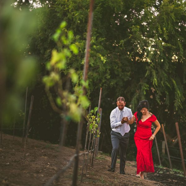 Judy + Craig / SF Bay Area Destination Wedding