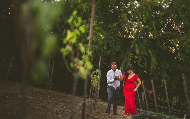 Judy + Craig / SF Bay Area Destination Wedding